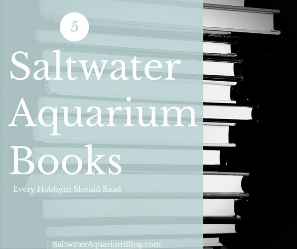 5 Saltwater Aquarium Books Every Hobbyist Should Read
