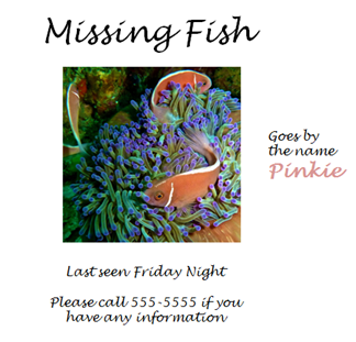 Flyer for a missing fish