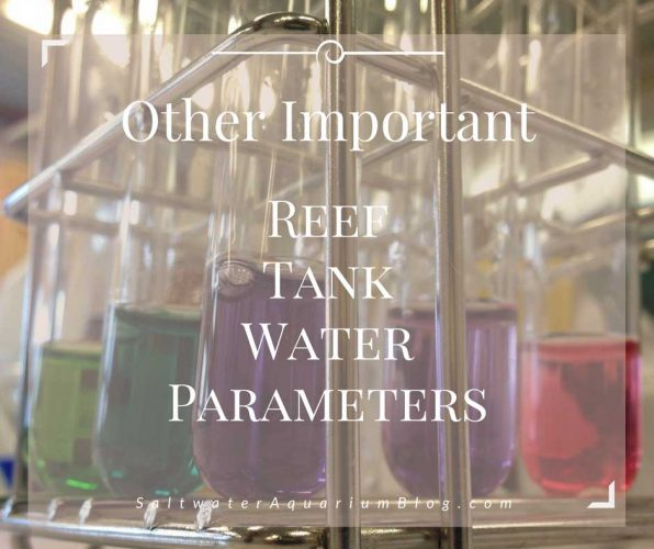 Other important water parameters