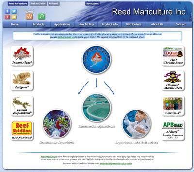 Reed Mariculture, Inc. is a good resource when buying saltwater fish online