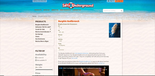 Salty Underground works for buying saltwater fish online or Berghia nudibranchs