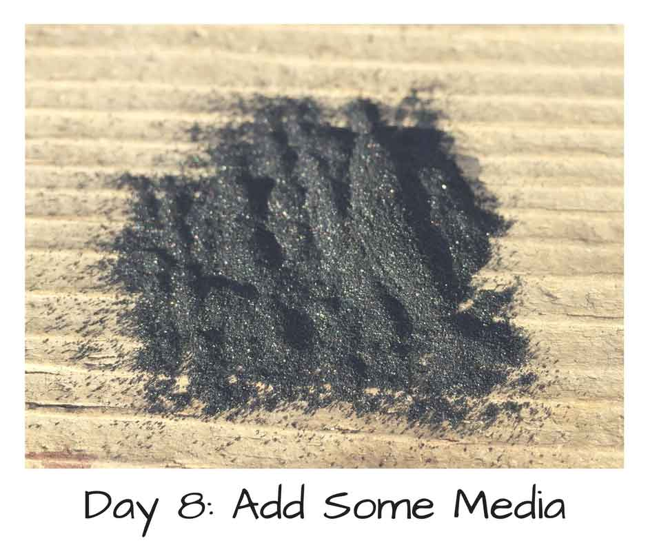 Day 8: Add Some Media