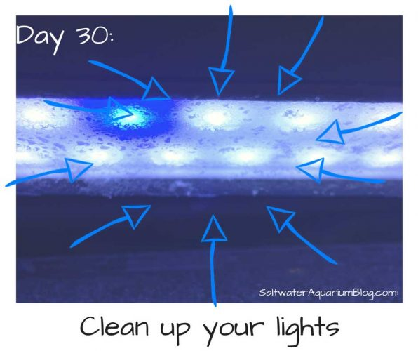 Clean up your lights
