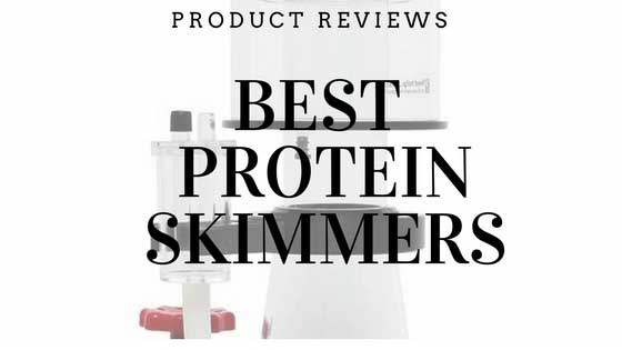 best protein skimmers product reviews article cover image for top saltwater aquarium blog posts