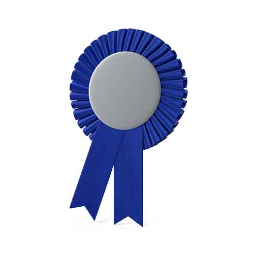 blue ribbon for the best