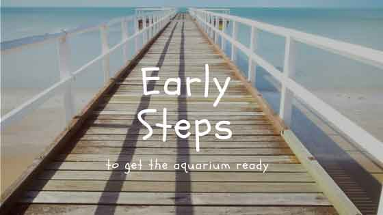 early steps to get the aquarium ready