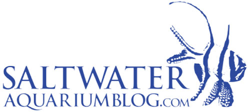 saltwater aquarium blog logo 500 pix