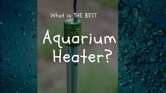 best aquarium heater