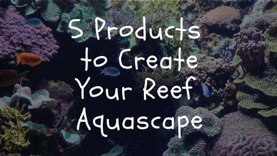 5 products to create your reef aquascape