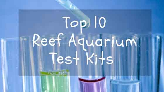 top 10 reef aquarium test kits