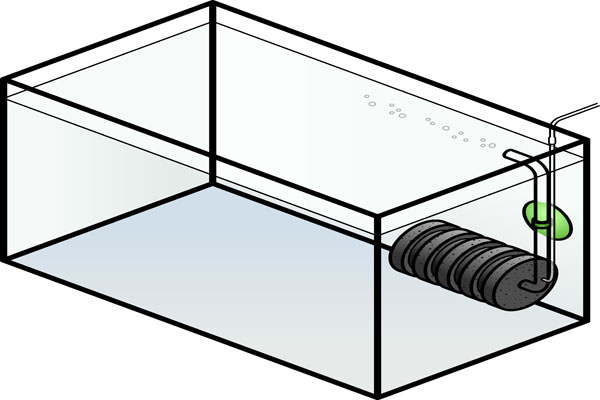 Multiple sponge filters make it easy to get new aquariums ready to go