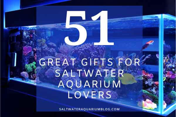 Great gifs for saltwater aquarium lovers small image