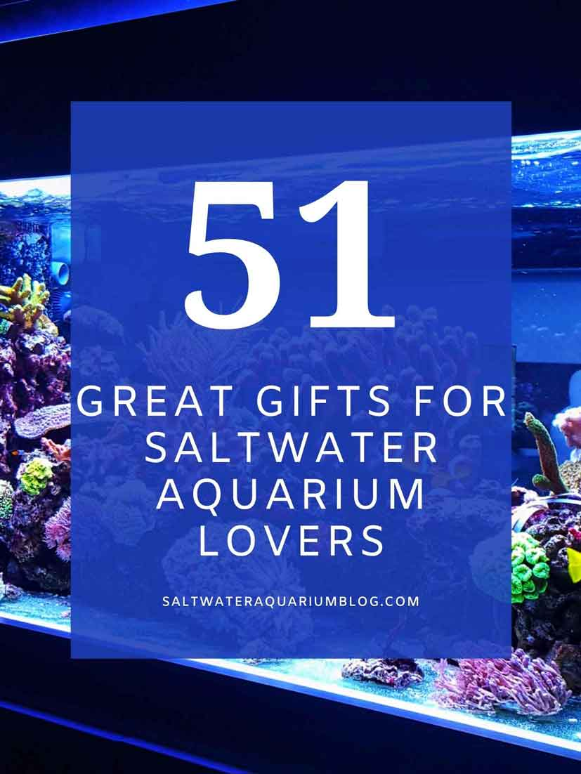 Gifts for aquarium lovers